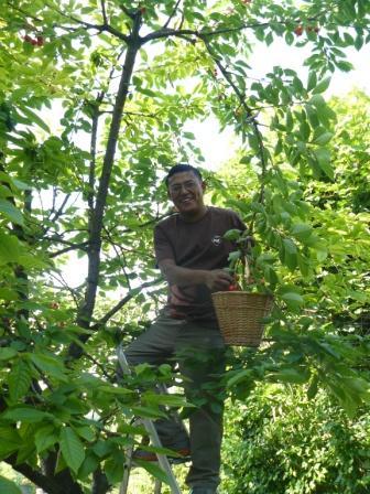 25 juin chez brigitte et jean pierre revoil vaux sur for Au jardin de jean pierre inc